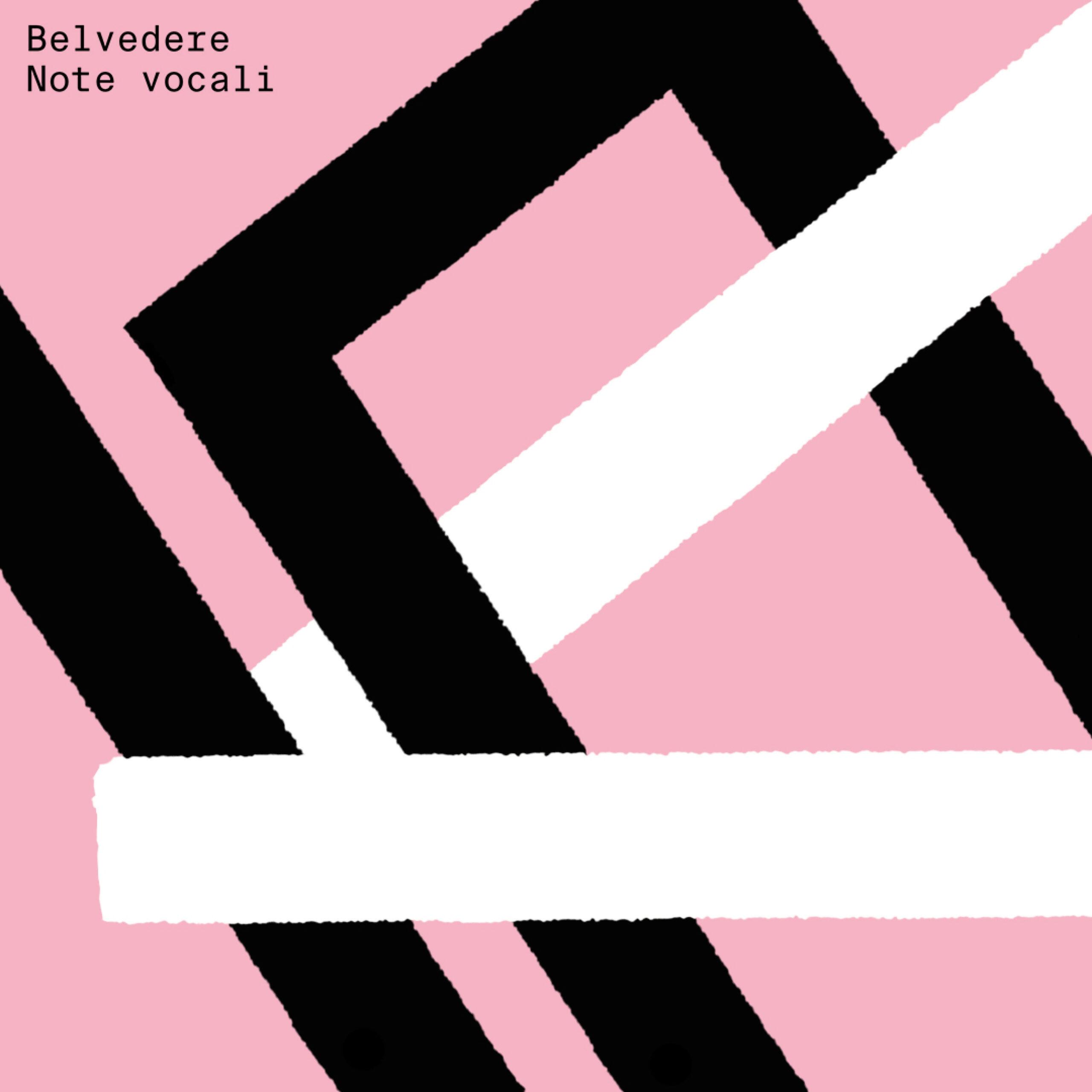 Note Vocali di Belvedere è il primo disco italiano registrato su WhatsApp